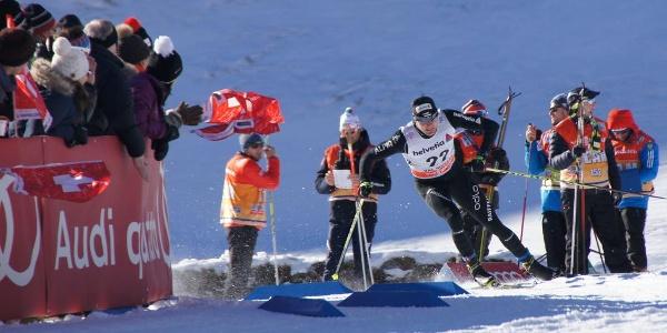 Tour de Ski, Dario Cologna