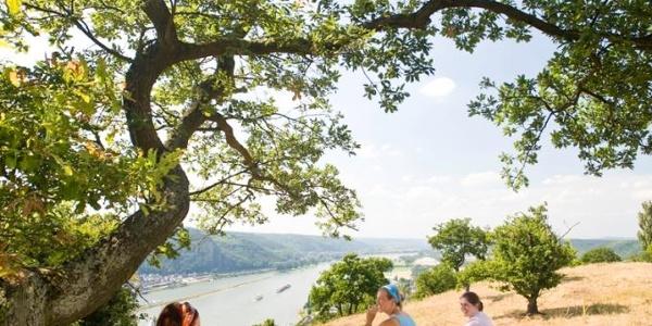 Rast am Rheinsteig