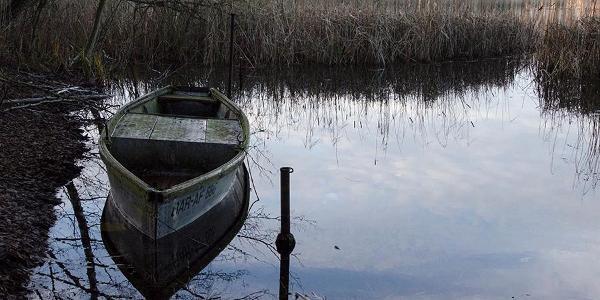 Am Ufer des Wittwesee