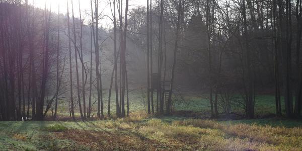 Im Tal des Kleinen Naafbaches