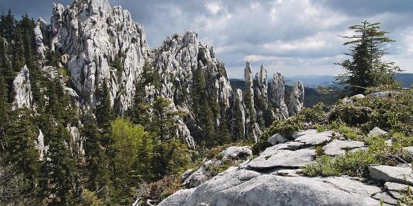 Bijele stijene - vrh