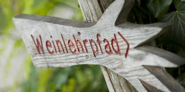 Weinlehrpfad in Kurtatsch
