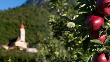 Apfelgärten-Runde