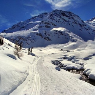 Cross country ski run in the Lazinsertal
