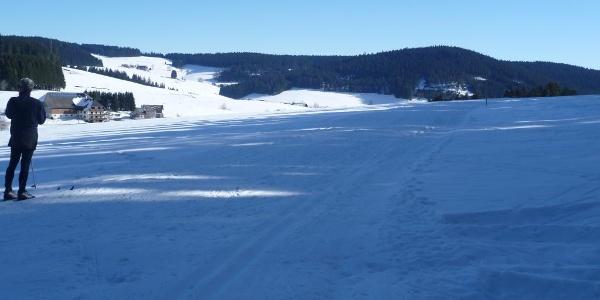 Waldau mit Blick auf den Stalterhof