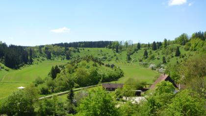 Das Naturschutzgebiet Neckarburg (Bergle)