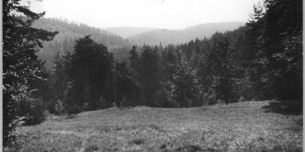 Sängerwiese - Eisenach (1954)