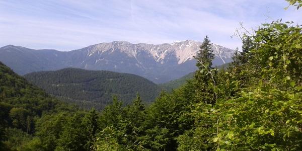 Blick von der Kaiserbenwiese zum Schneeberg