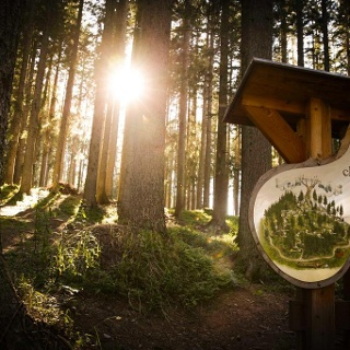 Il cartello all'inizio del bosco