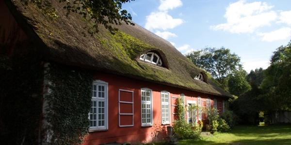 Reetgedecktes Haus im Achterland