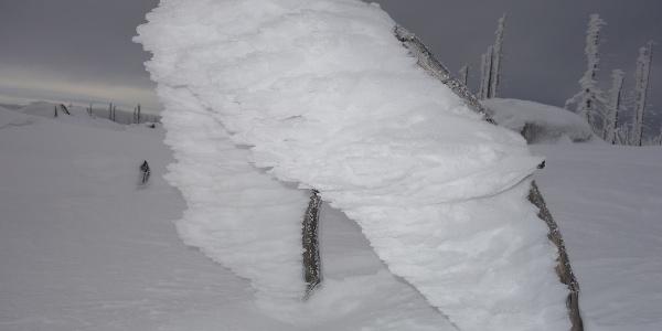 Bizarre Schneegebilde auf einem kleinen Zweig