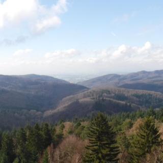Sagenhafte Aussichten über den Odenwald