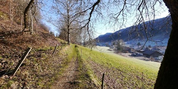 Wanderweg oberhalb von Wiedemannsdorf