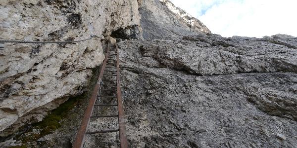 Leiter auf dem Sentiero Alberto Bonacossa