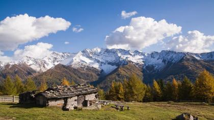 Alpenpanorama von den Holzerböden aus gesehen - Panorama alpino visto dal Holzerböden
