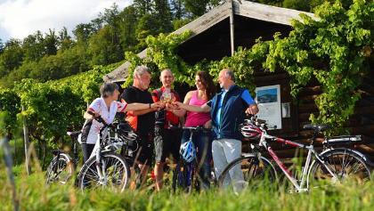 Radfahren mit Wein_Kraichgau_Stromberg_Fotostate_Jan_Bürgermeister