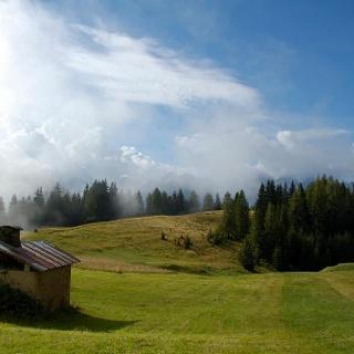 Pasture Land in Vardabe