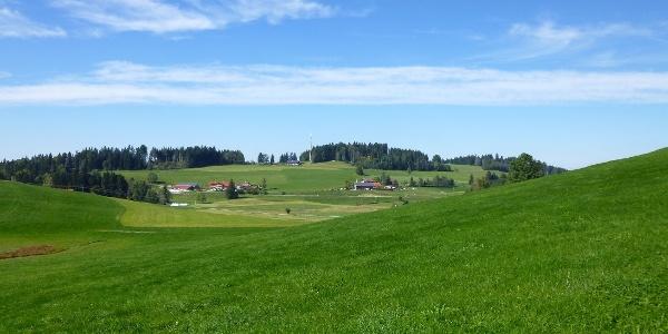 Senke 835 m N-Blick Westlicher Oberberg