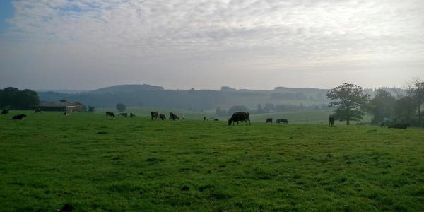 Breckerfelder Höhen