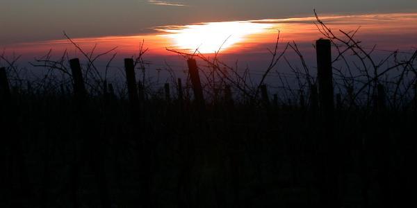 Sonnenuntergang am Kleinheppacher Kopf