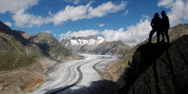 The Large Aletsch Glacier