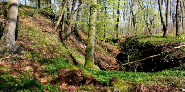 In Fels gehauener Schutzgraben
