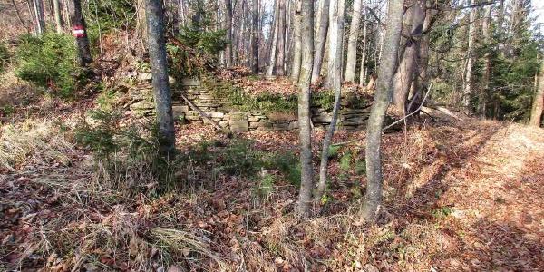 Ruine Bauernhof (bei Wildfütterung)