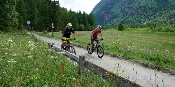 Auf dem Trail zwischen Täsch und Randa