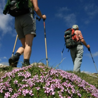 Tiroler Höhenweg im Passeiertal