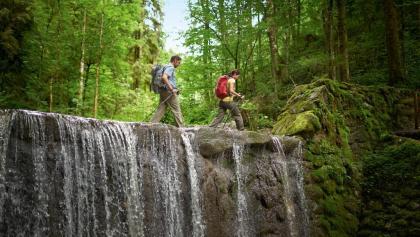 Wasserläufer Route