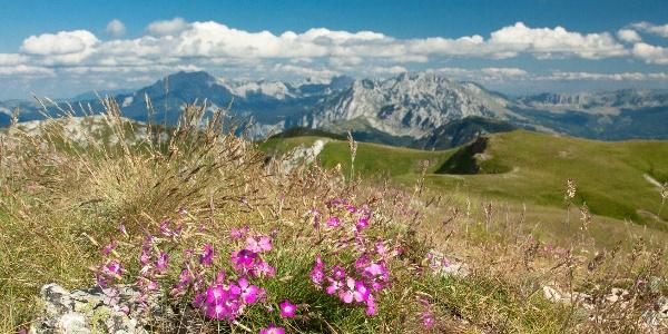 View from Bregoč peak