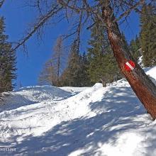Unterwegs Richtung Klafterseen entlang der Wintermarkierung