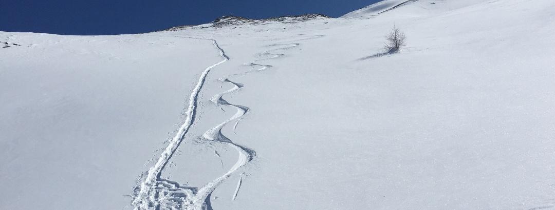 Schneeschuh versus Skitour - bei der Abfahrt keine Frage!