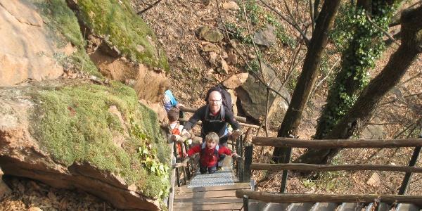 Bevor wir die Ruine der St. Peter Kirche in Altenburg erreichen, führen uns nochmal richtig steile Treppen aus der Klamm heraus