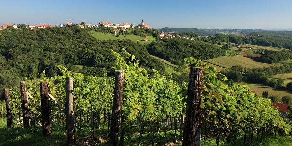 Die Weingärten bei Klöch