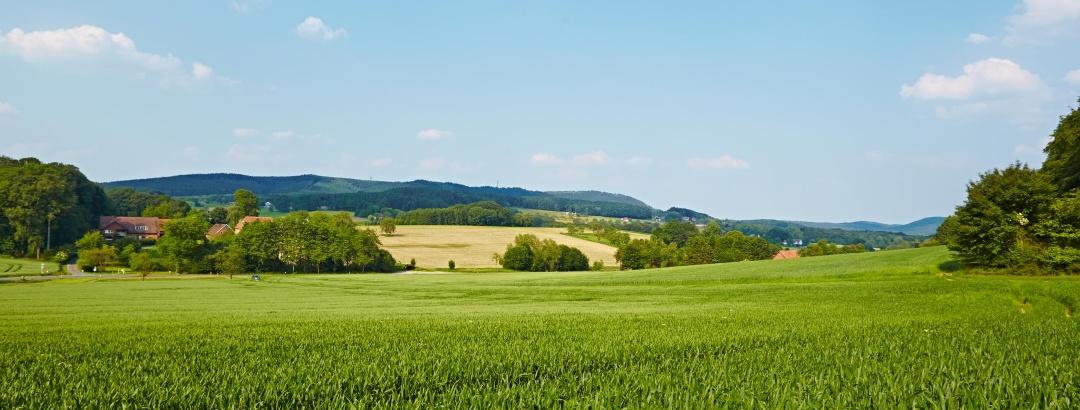 Blick ins Münsterland