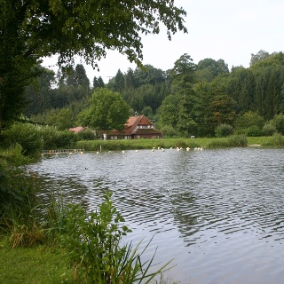 Neumühlsee, Waldenburg, Hohenlohe