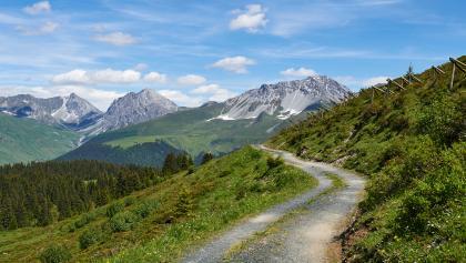 Zugangsweg zur Prätschalp