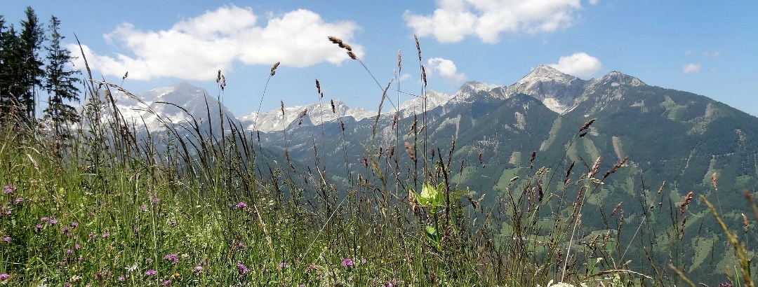 Die oberösterreichische Bergwelt