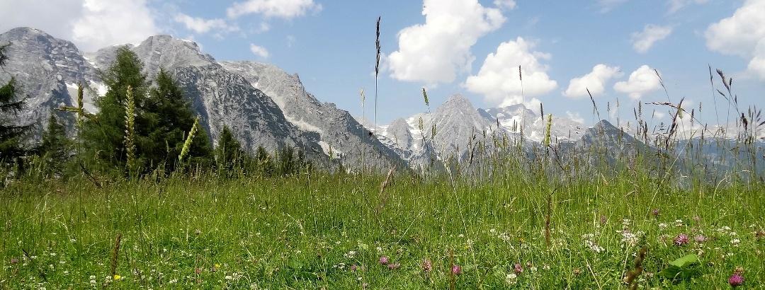 Panoramablick auf dem Dolomitensteig