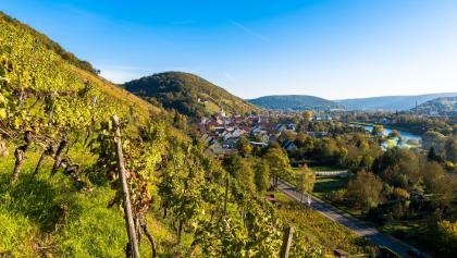 Idyllisches Churfranken, Klingenberg