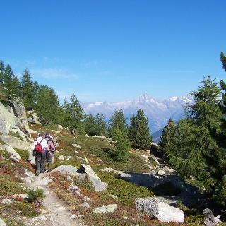 Wanderer auf dem Höhenweg Grächen - Saas Fee