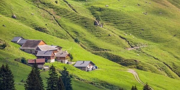 Blick auf Alpe Lün