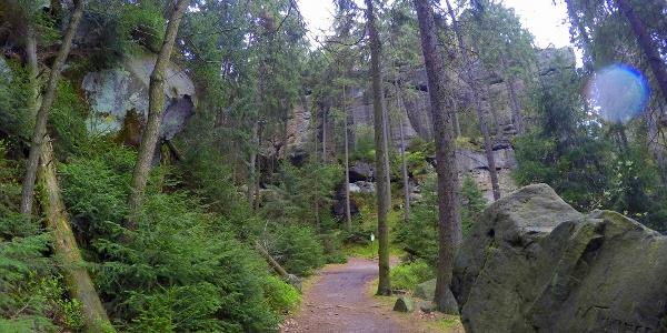 Wunderschöne Wanderwege wie hier kurz vor der Gautschgrotte