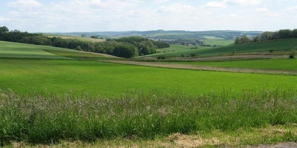 Aussichtspunkt auf der Lebacher Runde