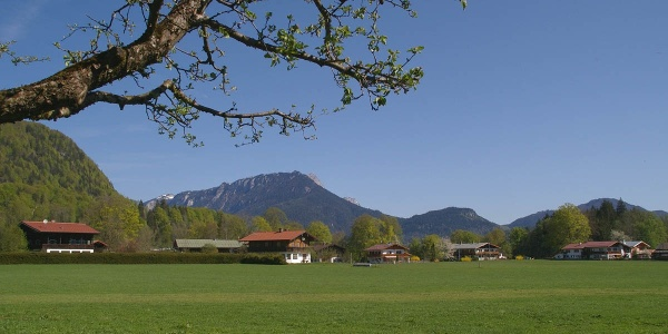 Kühroint über Schönau