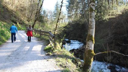 A walk through Talbachklamm gorge