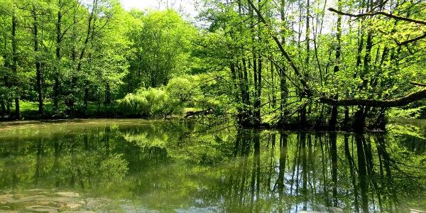 Pfannwaldsee - Ausgangspunkt und Endpunkt der Tour