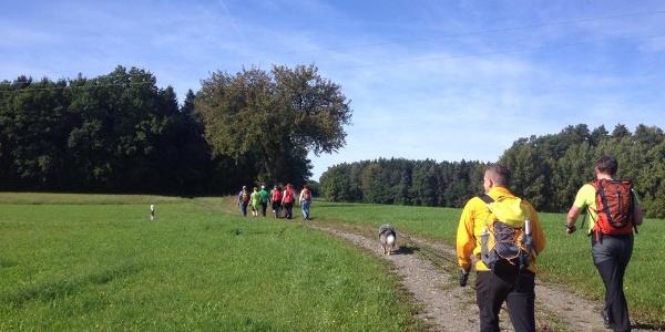 Wanderer auf dem Stübengrabenweg, Foto: Frankenwald Tourismus
