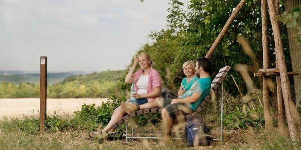 Rheinblick auf der Vitaltour Wald, Wein & Horizonte